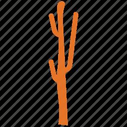 cactus, desert plant, ecology, nature icon