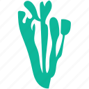 generic plant, herbs, nature, sage icon