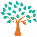 generic, spreading, spring tree, tree icon