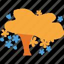 autumn tree, fall in tree, shrub, spreading