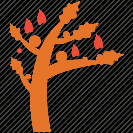 autumn tree, fall in, generic, tree icon