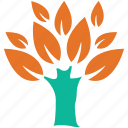 broad leafed, leafy, plant, spreading icon