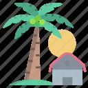 palm, tree, view
