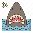 animal, man eater, sea, shark