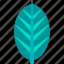 bird, leaf, nature, of, paradise, plant, tropical
