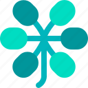 dwarf, foliage, leaf, nature, plant, scheflerra, tropical