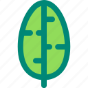 banana, foliage, leaf, nature, plant, tropical
