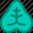 caladium, fancy, foliage, leaf, nature, plant, tropical