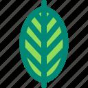 bird, leaf, nature, paradise, plant, tropical icon