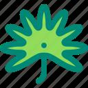 fan, foliage, leaf, nature, palm, plant, tropical