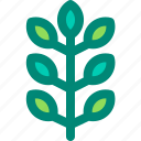 leaf, foliage, tropical, nature, ash, plant icon