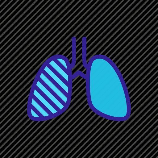 Disease, facial, healthy, microbacterium, study, tuberculesis, tuberculosis icon - Download on Iconfinder