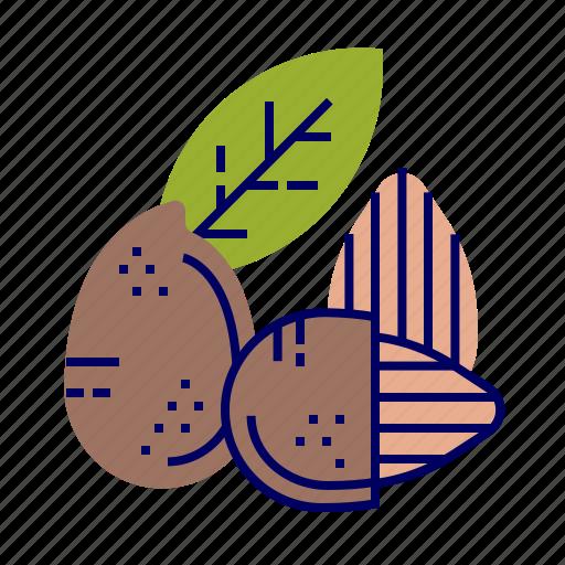 almond, food, fruit, fruit icons, raw food icon