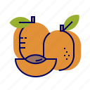 apricot, food, fruit, fruit icons, raw food icon