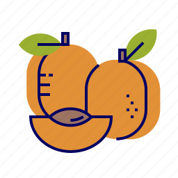 apricot, food, fruit, fruit icons, raw food icon