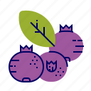 blueberry, fruit, fruit icons, raw food icon