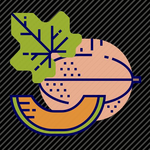 cantaloupe, fruit, fruit icons, raw food icon