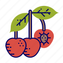cherry, fruit, fruit icons, raw food icon
