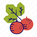 currant, fruit, fruit icons, raw food icon