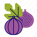 fig, food, fruit, fruit icon, raw food icon