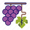 food, fruit icon, fuit, grape, raw food icon
