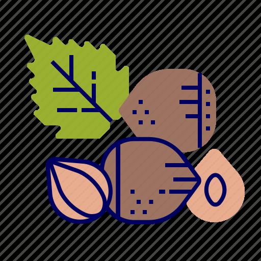 food, fruit, fruit icon, hazelnut, raw food icon
