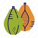 food, fruit, fruit icon, green, papaya icon