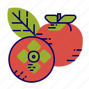 food, fruit, fruit icon, persimmon, red icon