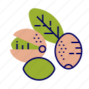 fruit, fruit icons, green, pink, pistachio, raw food icon