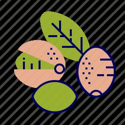 fruit, fruit icons, green, pink, pistachio, raw food icon