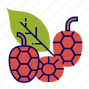 food, fruit icon, fuit, green, raspberry, raw food, red icon