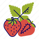 food, fruit, fruit icons, red, strawberry icon