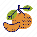 food, fruit, fruit icons, green, orange, tangerine icon