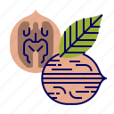 brown, colors, food, fruit, fruit icons, pink, walnut icon