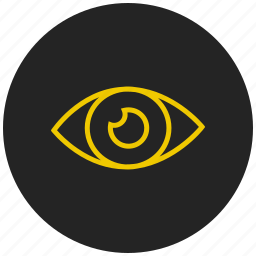 beauty, eye, find, human eye, look, show, view icon