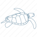 ocean, sea turtle, shell, water icon