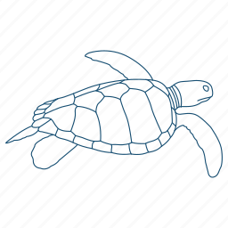 animal, ocean, sea turtle, shell, water icon