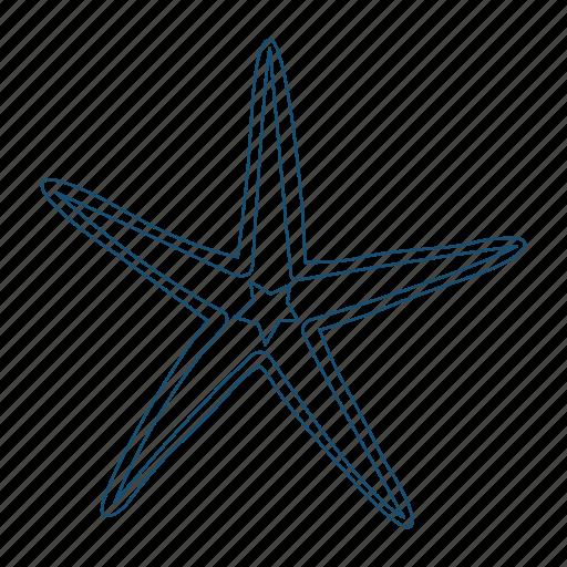 animal, echinoderms, ocean, sea star, starfish icon