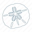 ocean, sand dollar, sea shell, shell, urchin icon
