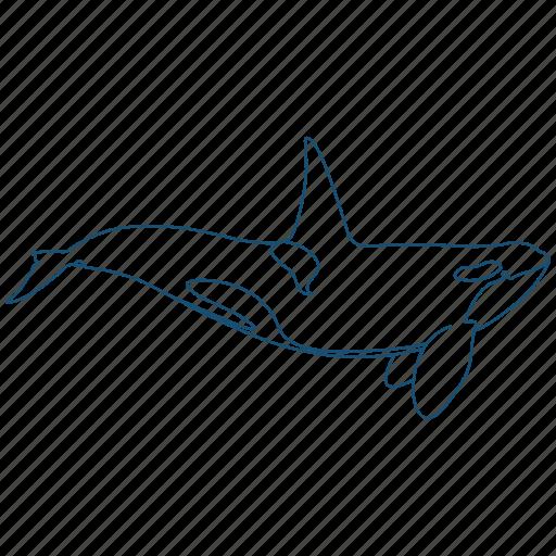 killer, mammal, ocean, whale icon