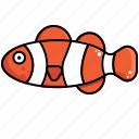 clown, clownfish, fish, sea