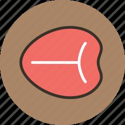 beef, bone, food, meat, steak, tbone icon