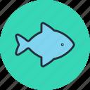 fish, food, kitchen, seafood
