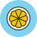 citrus, food, fruit, lemon, slice icon