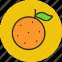 citrus, food, fruit, orange