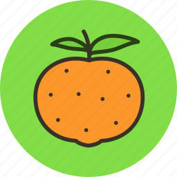 citrus, food, fruit, mandarine icon