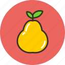 food, fruit, pear, vegetable icon