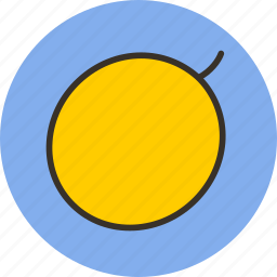 berry, food, fruit, melon icon