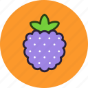berry, dessert, food, fruit, raspberry, sweet icon