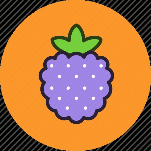 berry, dessert, food, fruit, raspberry, sweet icon